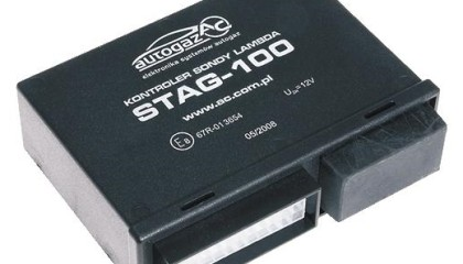 stag_100_306